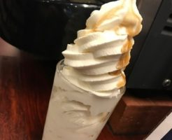 IMG 1659 thumbnail2 246x200 - 快活クラブ亀山エコー店(他各店)【食べ放題】18切符旅の宿として格安なソフトクリーム屋さんに泊まりました【大食い】