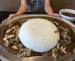 IMG 0174 246x200 - レストラン雪国(新潟県南魚沼市)【デカ盛り】重量5kg超のメガ盛りカレーに2人でチャレンジ