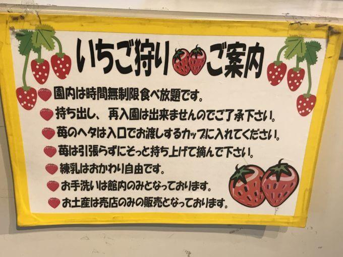 img 8146 - 伊豆フルーツパーク(三島市)【大食い】無制限食べ放題の甘い言葉に隠された罠【いちご狩り】